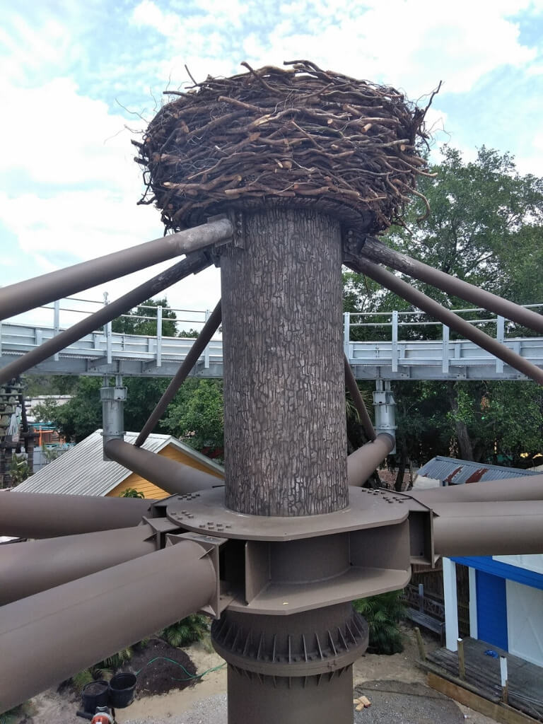 Eagle Nest For Zoo