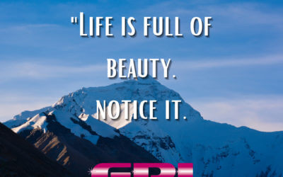 Wonderful Wednesday – Life is Full of Beauty