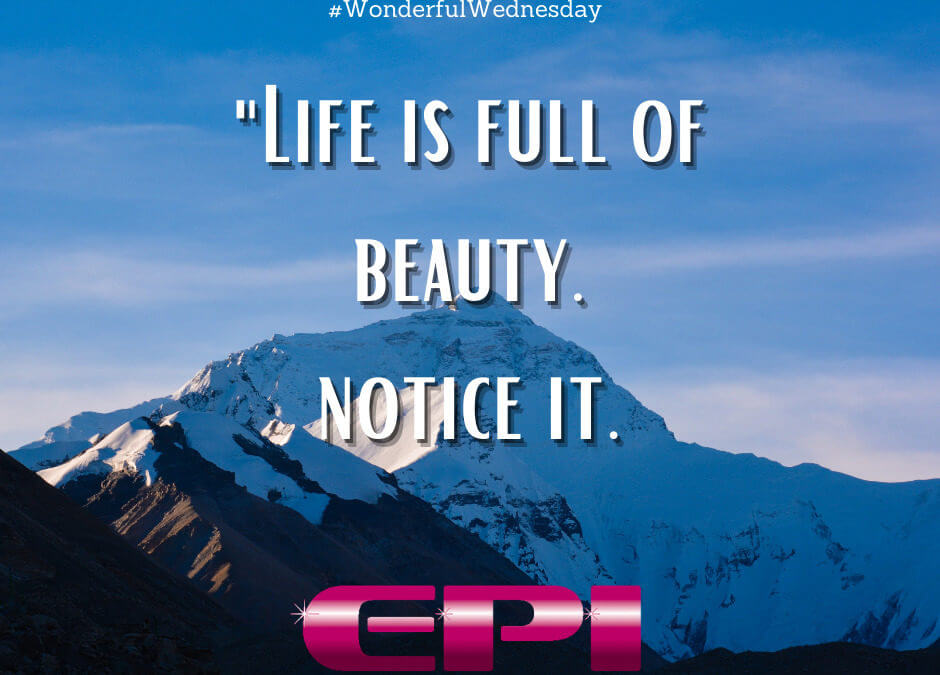 Wonderful Wednesday - Life is Full of Beauty